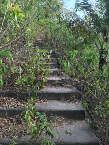 Secret trail in Nusa Penida, explore bali