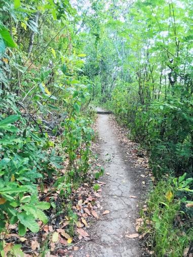 Hidden trails in Nusa Penida, Indonesia